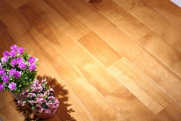 厂家 体育馆运动木地板日常清洁