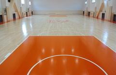 温泉会议中心篮球场