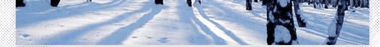 体育运动地板品牌