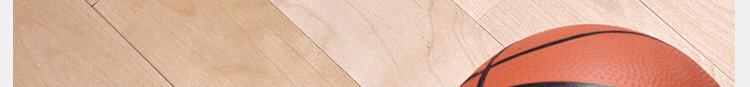 篮球场馆运动木地板品牌